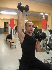 exercice de fitness : bras 2